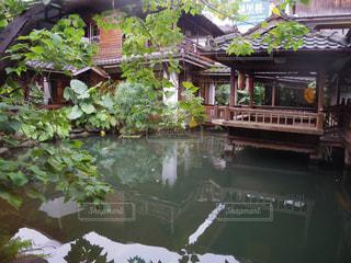 近くに池のアップの写真・画像素材[951108]
