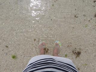 海の写真・画像素材[661038]