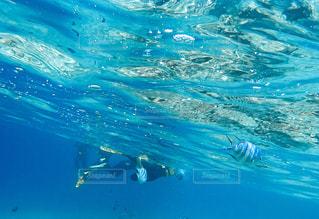 沖縄の海 - No.922905