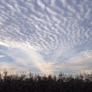 空,夕日,雲,夕暮れ
