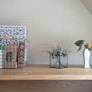 インテリア,植物,花瓶,ドライフラワー,壁,棚,グリーン,エアプランツ,収納