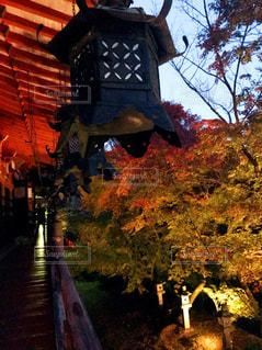 談山神社の紅葉。の写真・画像素材[870343]