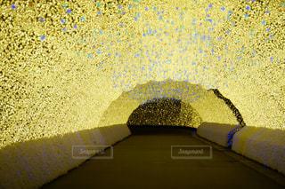 光のトンネル独り占めの写真・画像素材[916990]