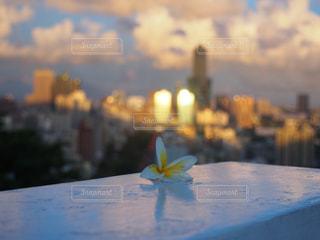 景色を一望できるデートスポット♡の写真・画像素材[917027]
