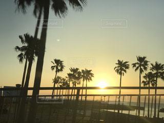 海辺の夕焼けの写真・画像素材[955792]