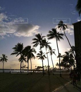 ハワイの夕焼け - No.955835