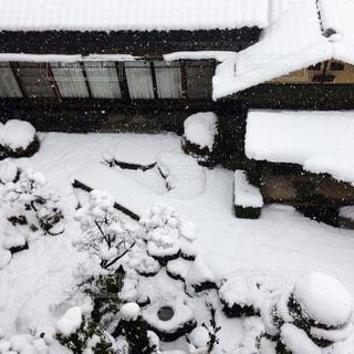 カメラ女子,雪,庭,屋外,白,SNOW,思い出,White