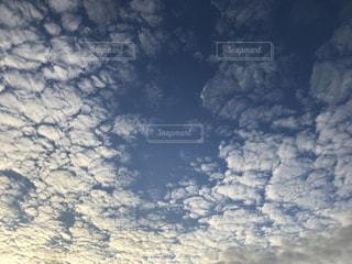 空,秋,雲,うろこ雲,秋空