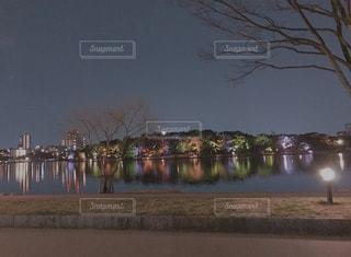 空,夜景,川,ライトアップ,休日,福岡,大濠公園