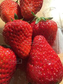 赤,フルーツ,フレッシュ,イチゴ