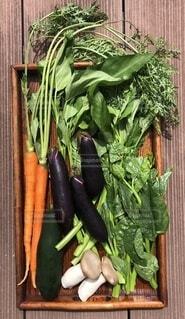 食べ物,野菜,食品,食材,フレッシュ,ベジタブル,ニンジン,ナス,エリンギ,ツルムラサキ