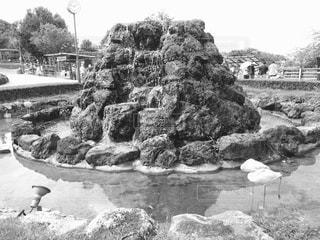 群馬サファリパーク 猿山 - No.814580