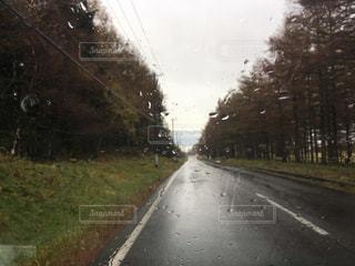 雨 - No.834100