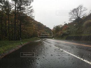 雨 - No.834103