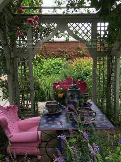 不思議の国のアリスの庭の写真・画像素材[1041299]