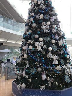 冬,空港,クリスマス,ツリー