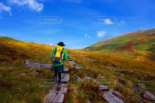 草で覆われた丘の上に立っている人の写真・画像素材[798227]
