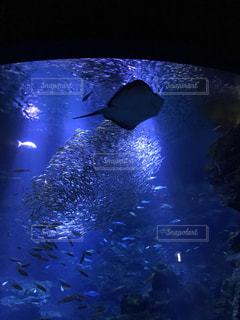 非常に暗い水の写真・画像素材[709999]