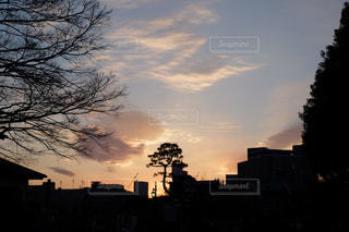 風景の写真・画像素材[569079]
