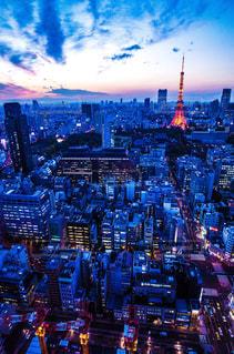 東京タワーの写真・画像素材[576581]