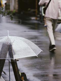 傘の写真・画像素材[571656]
