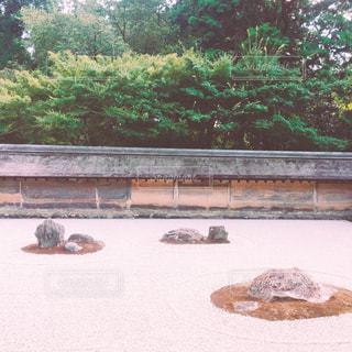 京都,観光,旅行,龍安寺,竜安寺
