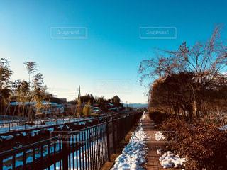 風景,空,雪