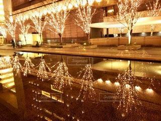 冬,夜,大阪,水面,反射,樹木,イルミネーション,照明,梅田,駅前,明るい,グランフロント大阪,シャンパンゴールド
