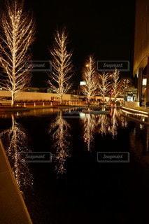 空,大阪,反射,イルミネーション,並木,明るい,グランフロント,シャンパンゴールド