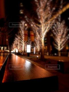 カフェ,冬,夜,夜景,大阪,テーブル,樹木,イルミネーション,グランフロント大阪,シャンパンゴールド
