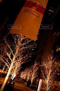 空,夜,大阪,樹木,イルミネーション,ライトアップ,並木,並木道,梅田,ショッピング,道路脇,グランフロント大阪,シャンパンゴールド