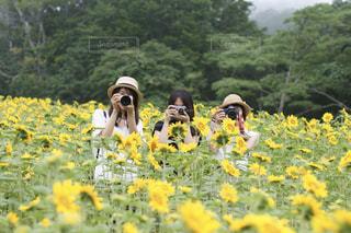 カメラ女子 - No.675303