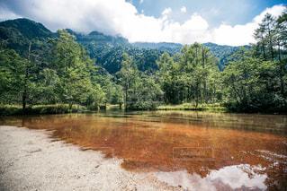 木々 に囲まれた水の体の写真・画像素材[1031620]