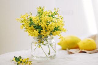 花の写真・画像素材[605952]