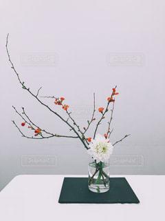 花,フラワーアレンジメント,紅白,お正月,フラワーアレンジ,ダリア,木瓜