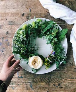 ブロッコリーと食品のプレートを持っている人の写真・画像素材[1205232]