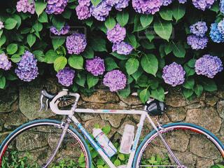 壁にもたれて自転車の写真・画像素材[1259469]