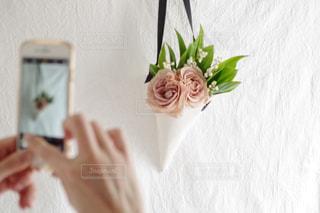 近くの花のアップの写真・画像素材[1377754]