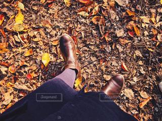 紅葉散歩♪の写真・画像素材[1631751]