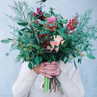 花の花束の写真・画像素材[1705428]