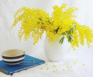 花,黄色,鮮やか,カフェラテ,ミモザ,イエロー,おうちカフェ,カラー,黄,yellow,mimoza