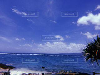奄美大島☺︎︎の写真・画像素材[990976]