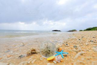 近くのビーチの上に食べ物をの写真・画像素材[1388842]