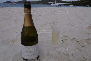 ビーチで乾杯の写真・画像素材[1435563]