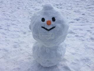 雪に覆われたフィールドの写真・画像素材[923523]