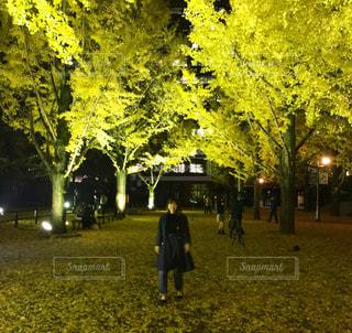 木の隣に立っている人の写真・画像素材[987020]