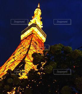 東京タワーの写真・画像素材[582073]