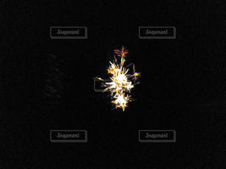 夏,花火,光,線香花火,思い出,儚さ,手持ち花火,煌めき,一瞬