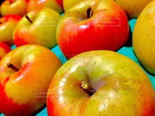 フルーツ,ツヤツヤ,リンゴ,ぐんま名月