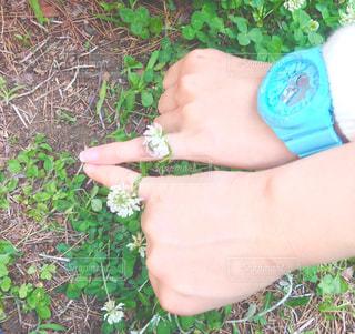 花,指輪,仲良し,野草,フラワーアレンジ,シロツメクサ,友達,約束,お揃い,ピンキーリング,草遊び